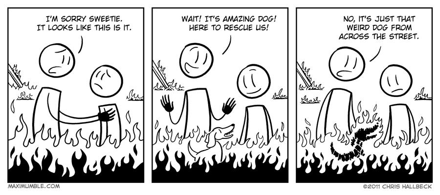 #252 – Hot Dog