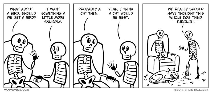 #664 – Chewed