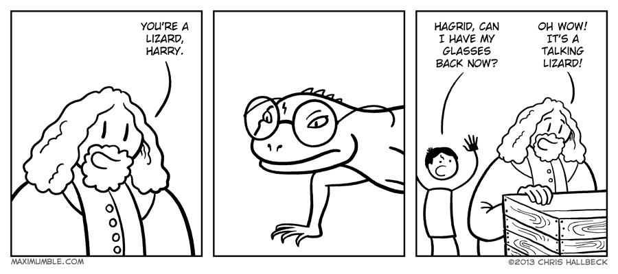 #753 – Lizard