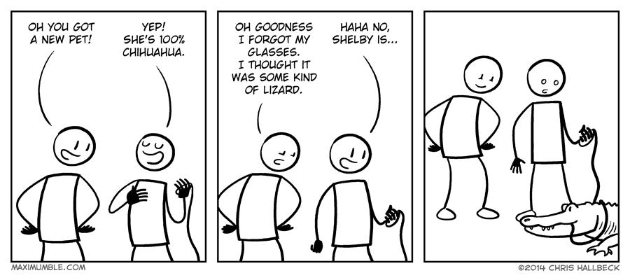 #809 – Leash
