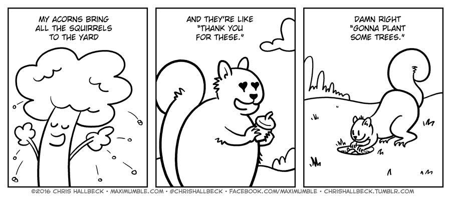#1412 – Acorns