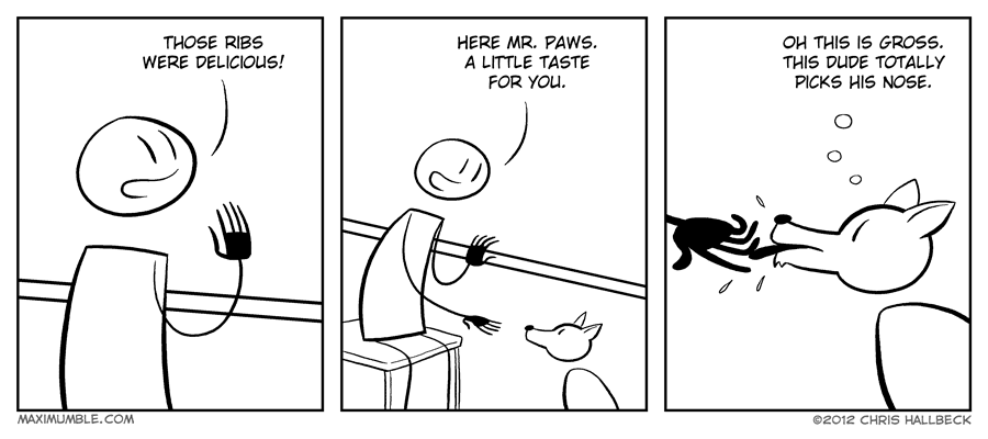 #428 – Rack