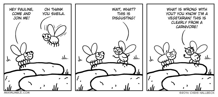 #863 – Flies