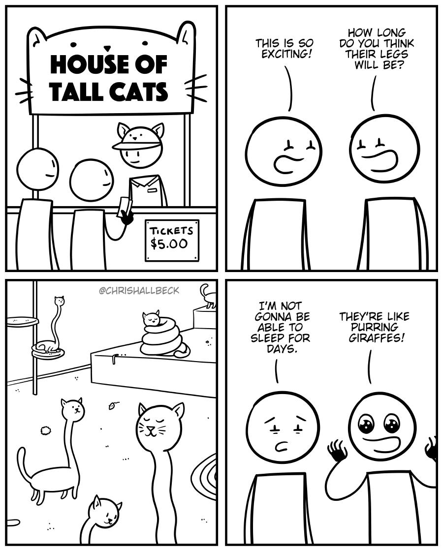 #1748 – Tall