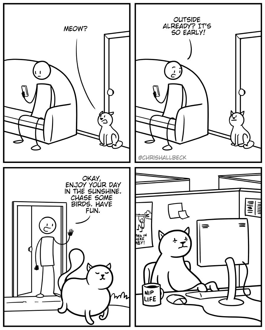 #1685 – Meow
